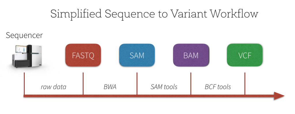 Simplified-Sequence-to-Variant-Workflow