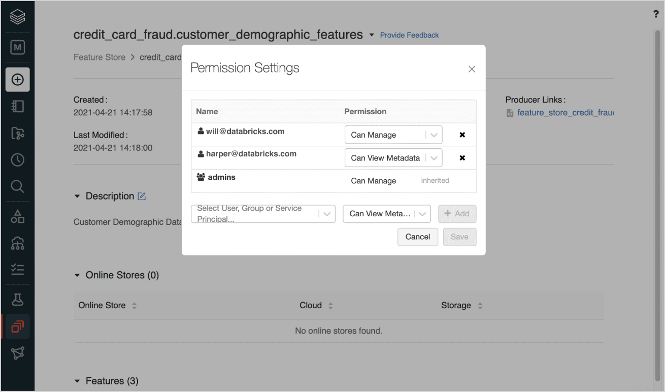 feature store governance