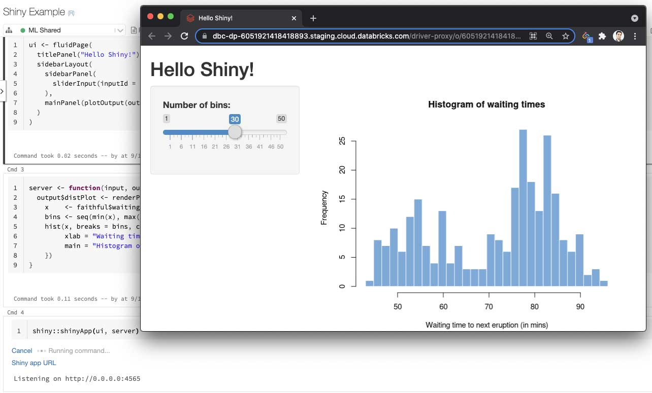 Databricks takes its support for Shiny to the next level by enabling R notebook users to develop and share live Shiny apps & dashboards.